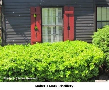 2014-06-01-Kentucky_Bourbon_Trail_Makers_Mark_2.jpg