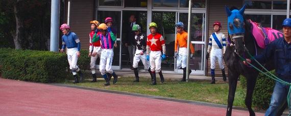 2014-06-02-kouchikeiba02.JPG