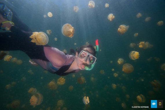 2014-06-06-jellyfish_lake_snorkel.jpg