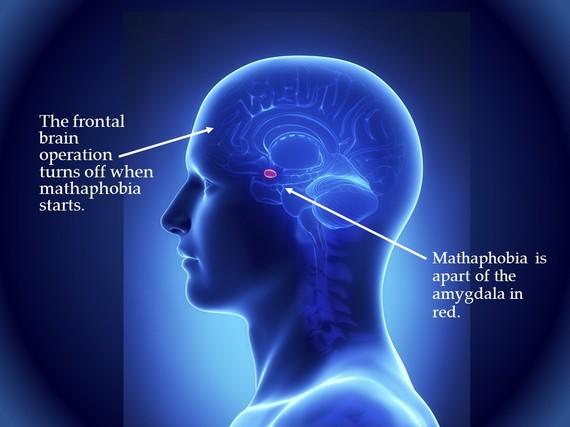 2014-06-11-brain.jpg