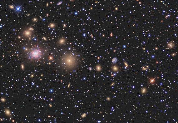 2014-06-11-cosmos1.jpg