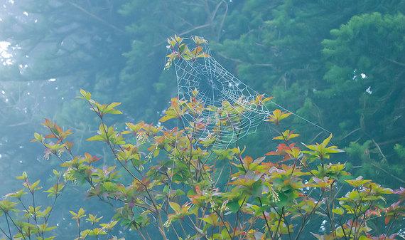 2014-06-13-043_image02.jpg