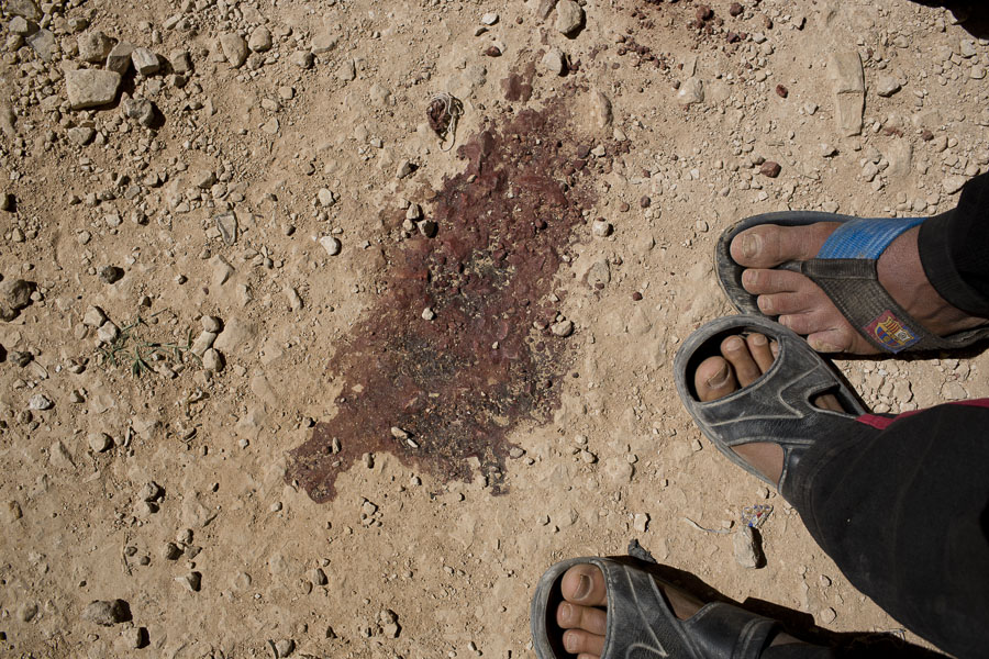 2014-06-13-DMS_Zaatari_0019.jpg