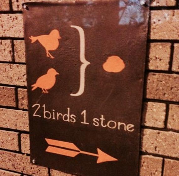 2014-06-17-2birds1stone.jpeg