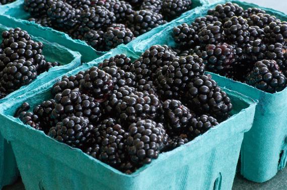 2014-06-18-blackberries.jpg