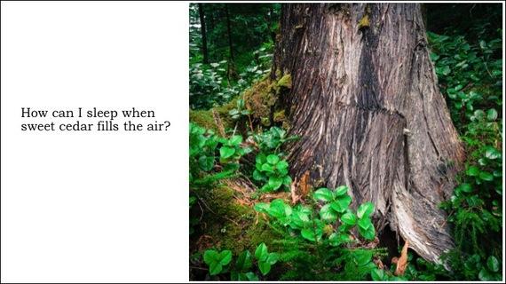 2014-06-19-Slide11.jpg