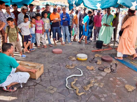 2014-06-19-SnakesDjemaaelFnasquare.jpg