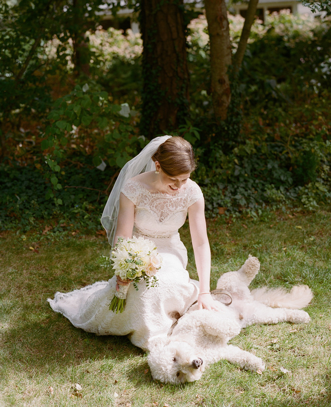 8 Adorable Animal Wedding Photos | HuffPost