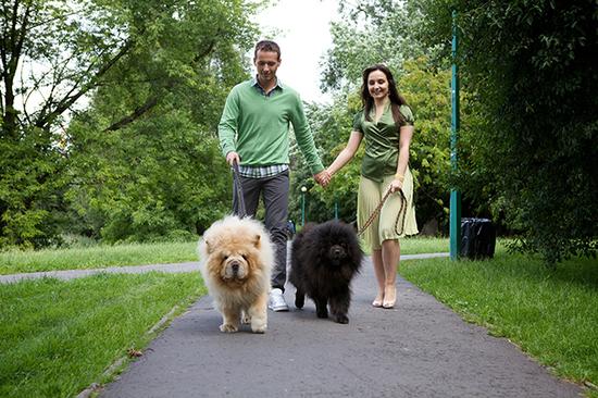 2014-06-27-pets.jpg