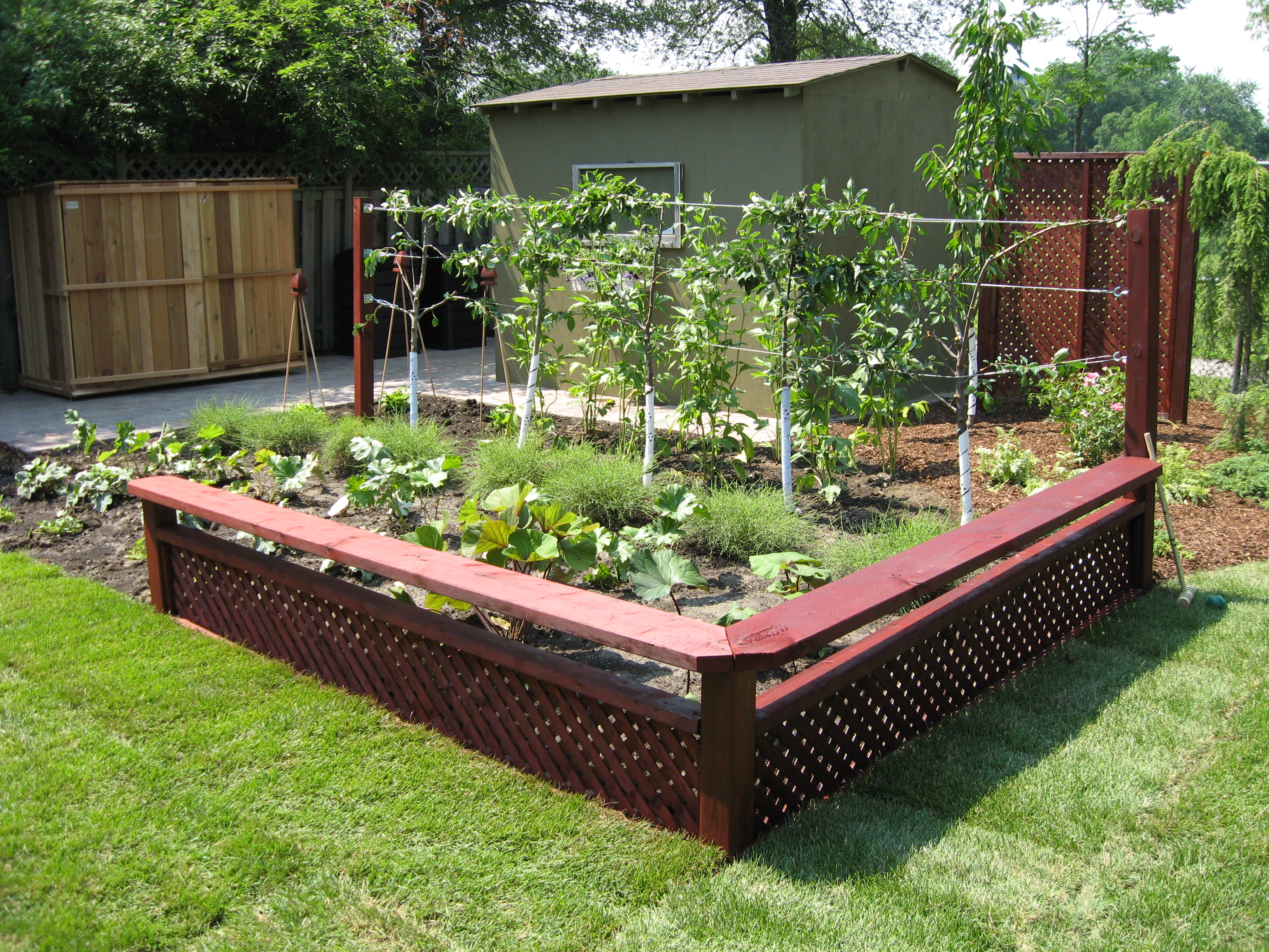How To Grow Your Own Kitchen Garden