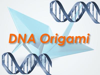 2014-06-29-DNAOrigami_0.jpg