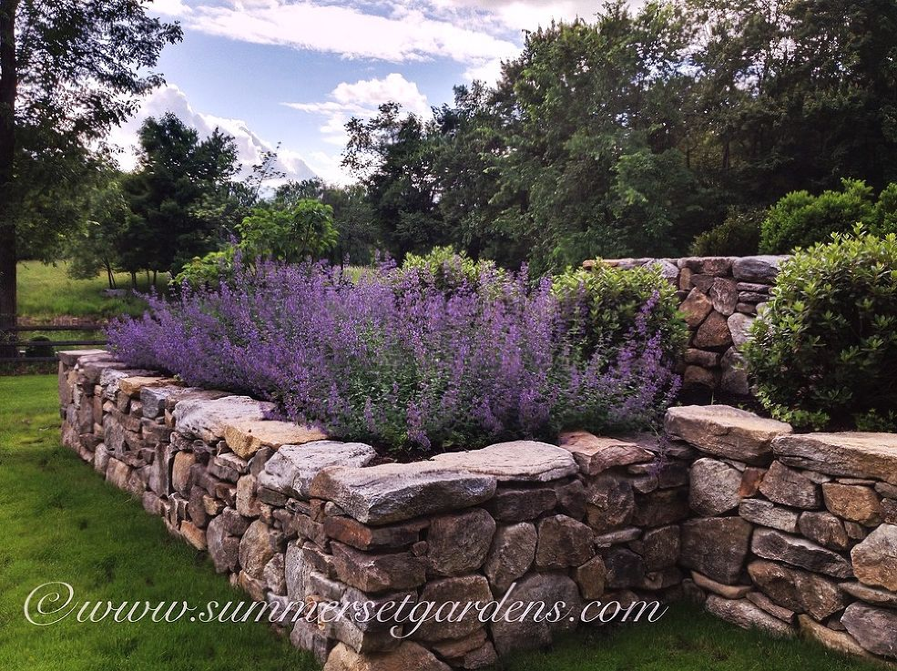 7 secrets to creating a country cottage garden huffpost for Country garden designs landscaping