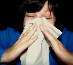 2014-07-01-sneeze_mcfarlandmo4014611539_bfdaef47d5_m.jpg