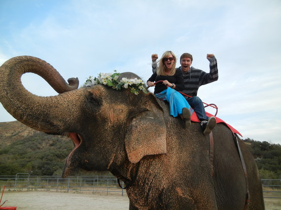 2014-07-14-elephant.JPG