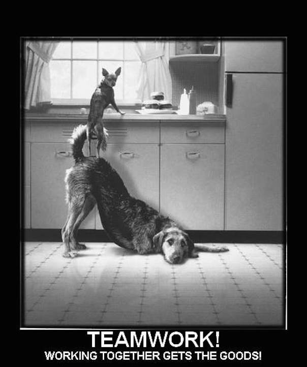 25 Best Memes About Dream Work: Lights Go On Part XXIX: Teamwork