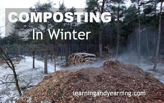 2014-07-16-CompostinginWinterviaLearningandYearningonHometalk.jpg