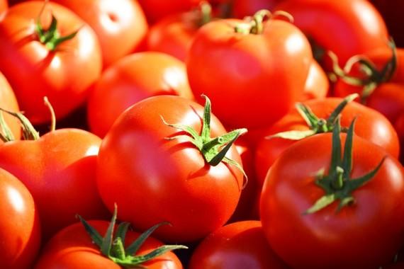 2014-07-17-Tomatoes.jpg