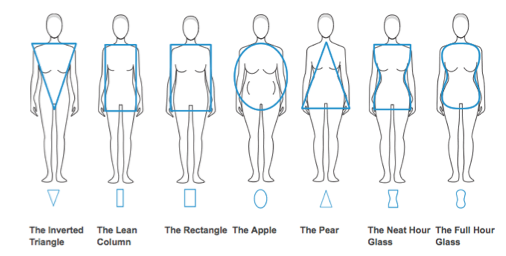2014-07-17-Womensbodyshapes.png