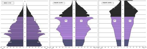 2014-07-18-demographics_japan.jpg