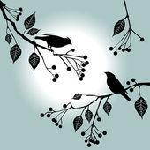 2014-07-20-bird1.jpg