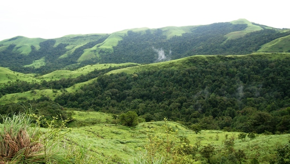 2014-07-23-WesternGhats_RohitRaocropped.jpg