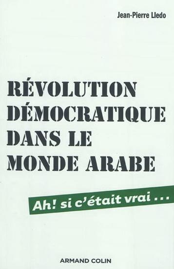 2014-07-24-Rvolutiondmocratiquedanslemondearabe.jpg