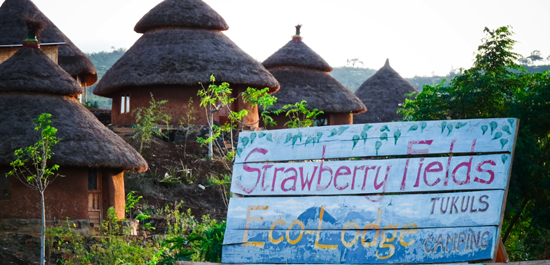 2014-07-25-strawberryfieldsecolodge_ethiopia.png