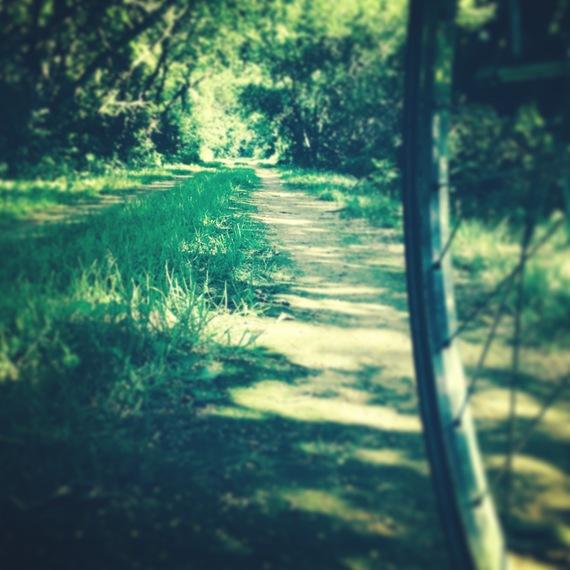 2014-07-29-SwamplandPath.JPG