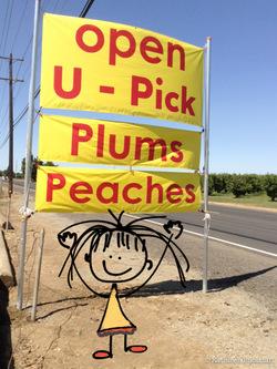 2014-07-31-peaches2.jpg