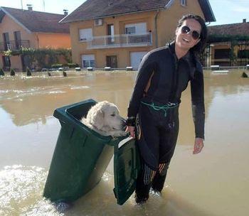 2014-08-01-bosniaflood.jpg