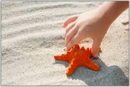 2014-08-06-StarfishStory.png