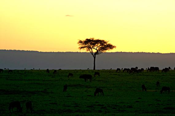2014-08-06-sunsetinkenya.jpg.jpg