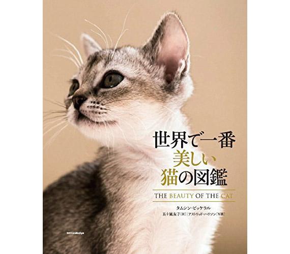 pictorialbookofcat01