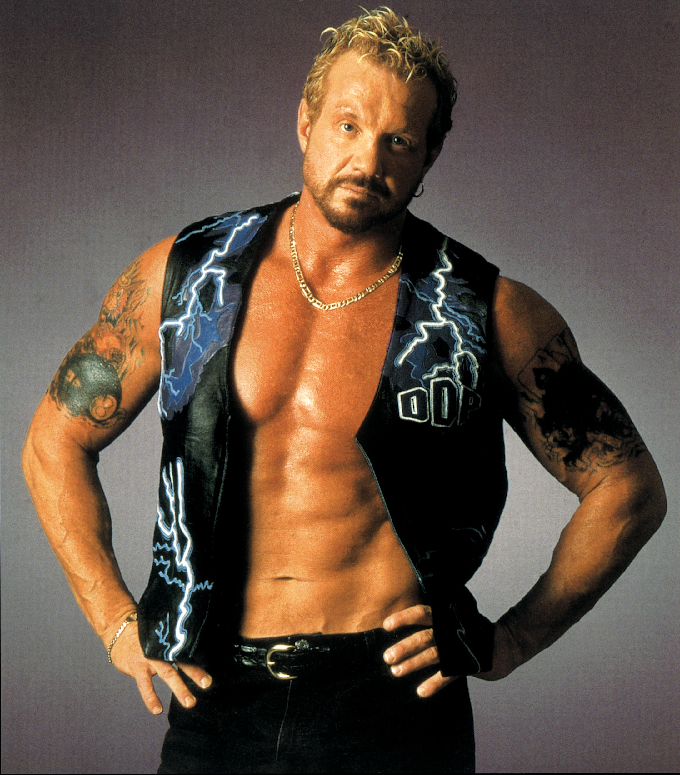 Diamond Dallas Page YOGA Master Diamond Dallas Page39s Reluctant Destiny