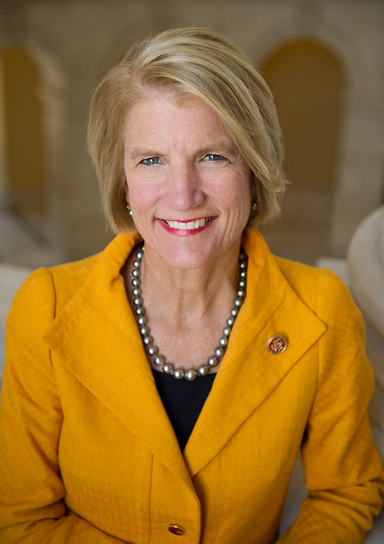 #DirtyDenier$ Day 8: Shelley Moore Capito