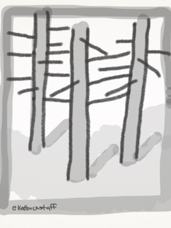 2014-08-12-forest.png