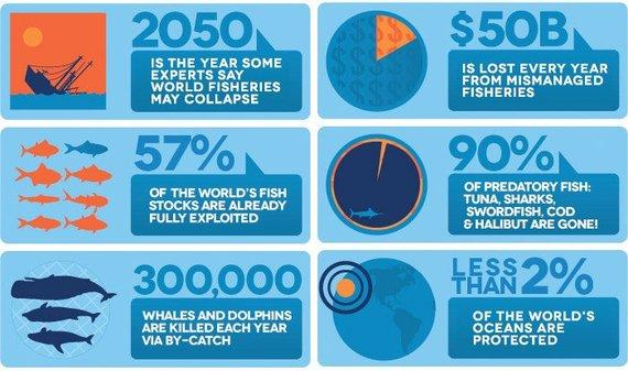2014-08-13-oceanthreats_infographic.jpg