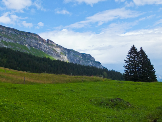 2014-08-14-MountainwithTrees.jpg