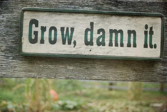 2014-08-18-smallbusinessgrowth.jpg
