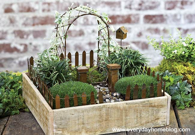 Fairy gardens are the tiny solution for gardening addicts for Creating a small garden
