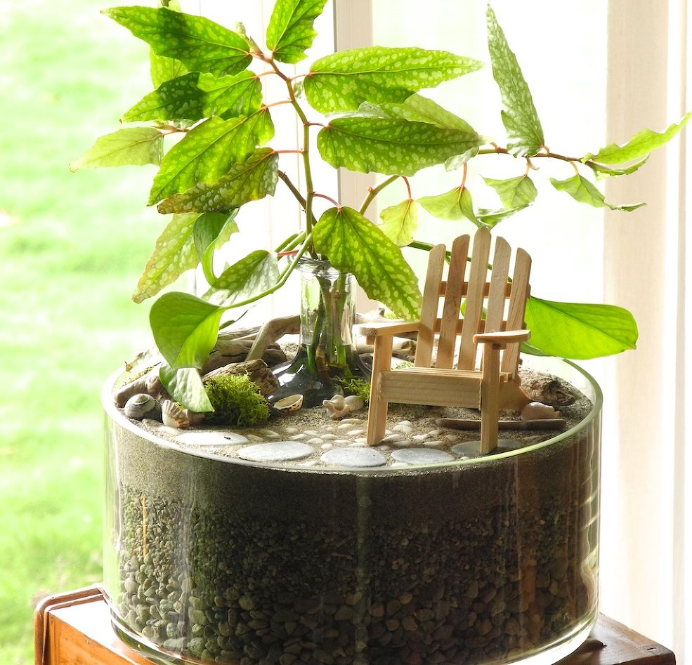 26 Mini Indoor Garden Ideas To Green Your Home: Fairy Gardens Are The Tiny Solution For Gardening Addicts
