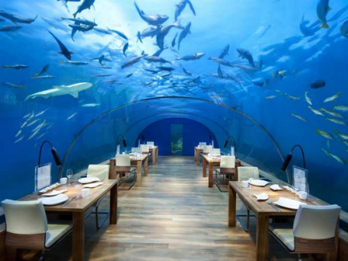 2014-08-20-IthaaUnderseaRestaurant.500.jpg