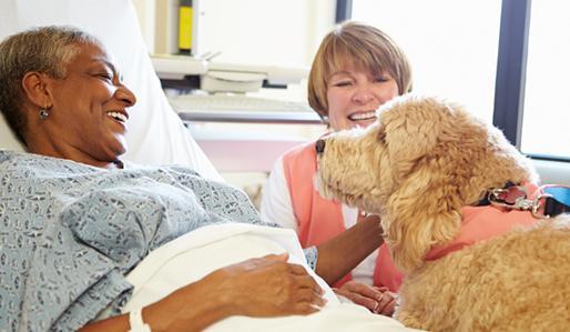 2014-08-20-therapydog_514x299.jpg