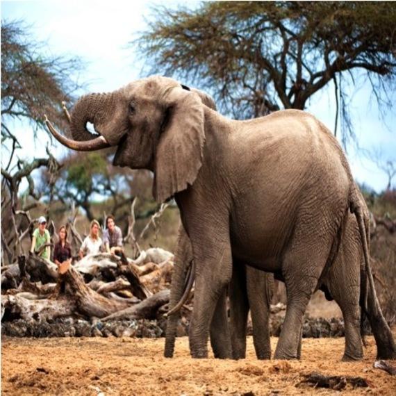 2014-08-21-Kenya_photo_4.jpg