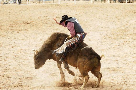 2014-08-22-rodeobull.jpg