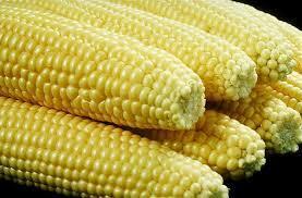 2014-08-25-corn.jpg