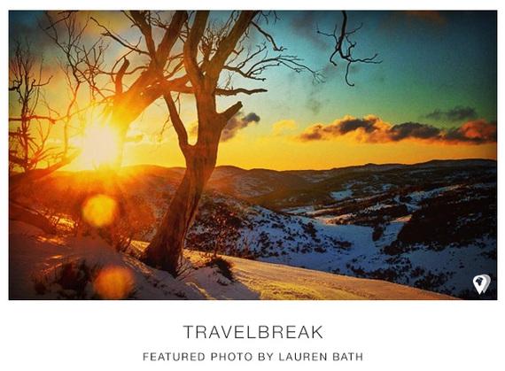 2014-08-27-TravelBreak.BestApps.LaurenBath.NSWAustralia.Tree_.jpg
