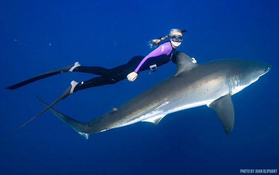 2014-09-04-OceanRamsey_sharkride.jpg