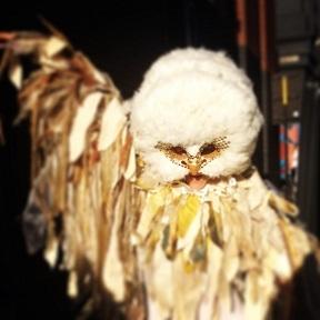 2014-09-10-owl4.jpg