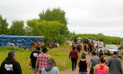2014-09-14-horse1.jpg